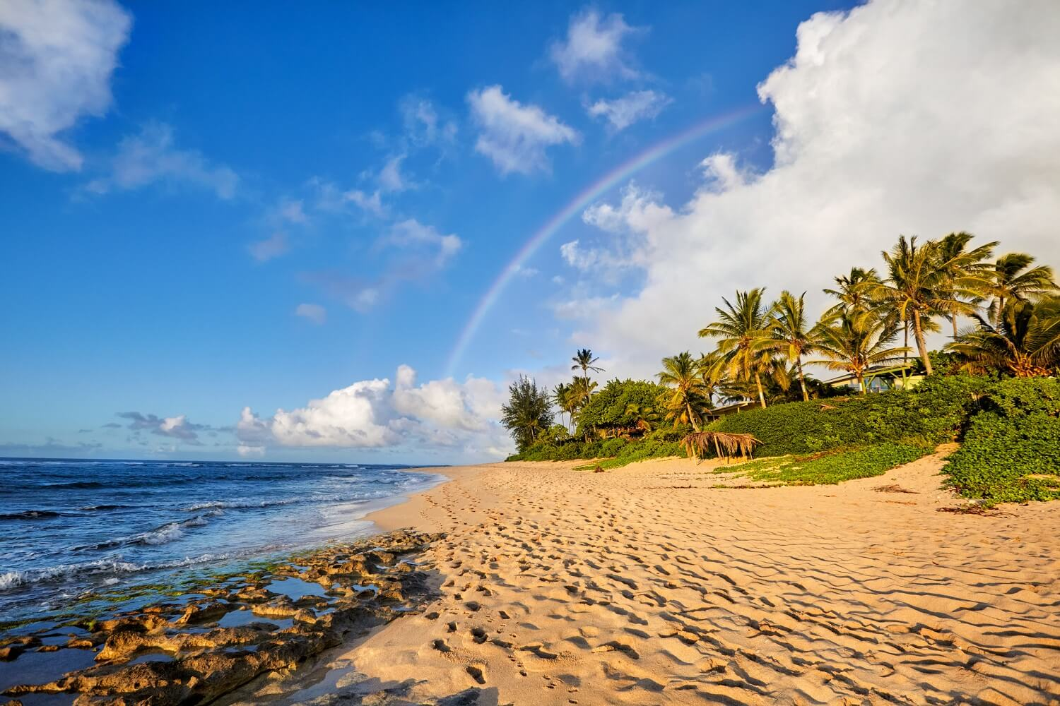 What Are The Best Beaches On The Big Island?